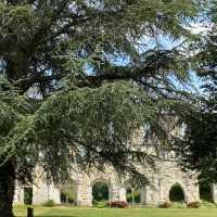 Sentier de l'abbaye de Mortemer